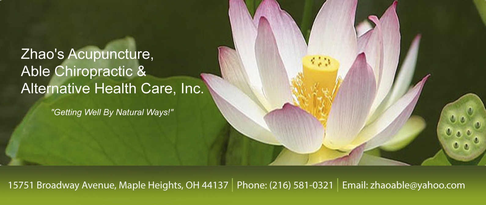 Zhao S Acupuncture Able Chiropractic Alternative Health Care Chiropractor In Maple Heights And The Greater North East Cleveland Oh Usa Home